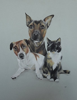 jack russell and friends